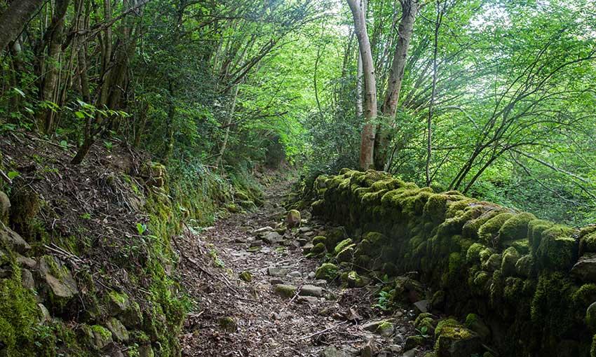 Camino-de-Fragen-a-Broto